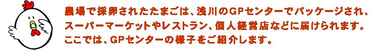 農場で採卵されたたまごは、浅川のGPセンターでパッケージされ、スーパーマーケットやレストラン、個人経営店などに届けられます。ここでは、GPセンターの様子をご紹介します。
